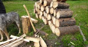 Widl Holzspalter