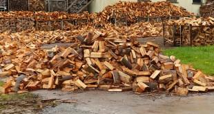 Zapfwellen Holzspalter